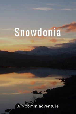Snowdonia A Moomin adventure