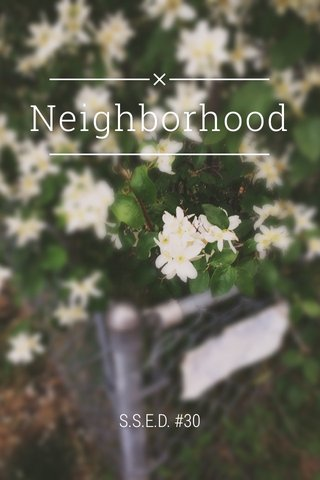 Neighborhood S.S.E.D. #30
