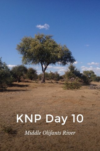 KNP Day 10 Middle Olifants River