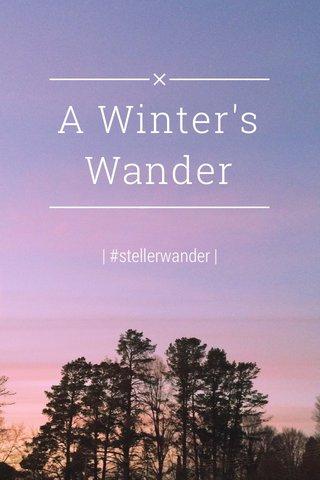 A Winter's Wander | #stellerwander |