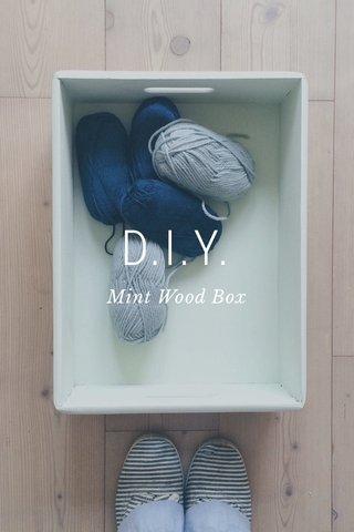 D.I.Y. Mint Wood Box