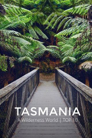 TASMANIA A Wilderness World | TOP 10