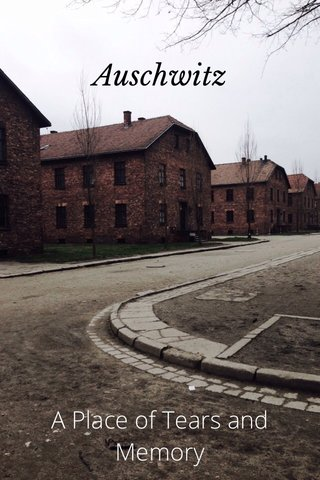 Auschwitz A Place of Tears and Memory