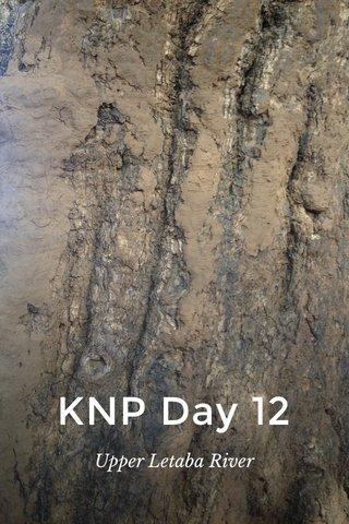 KNP Day 12 Upper Letaba River