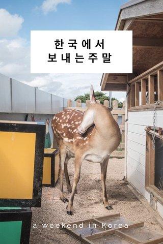 한국에서 보내는주말 a weekend in Korea