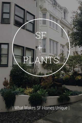 SF + PLANTS   What Makes SF Homes Unique  
