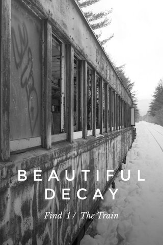 BEAUTIFULDECAY Find 1 / The Train