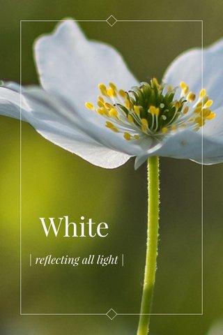 White | reflecting all light |