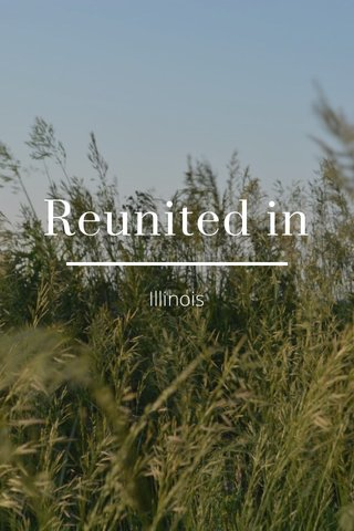Reunited in Illinois