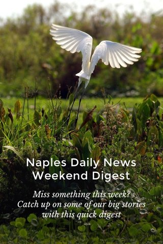 Naples Daily News Weekend Digest Miss something this week? Catch up on some of our big stories with this quick digest