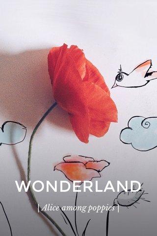 WONDERLAND | Alice among poppies |