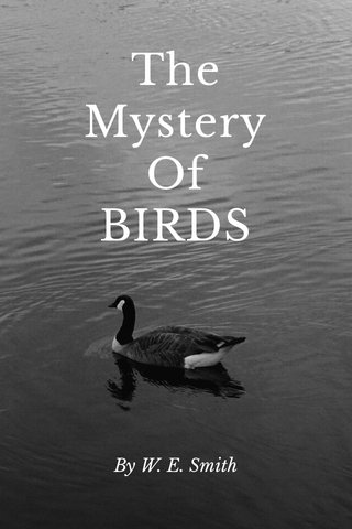 The Mystery Of BIRDS By W. E. Smith
