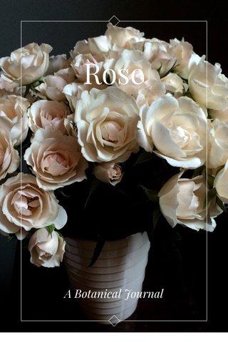 Rose A Botanical Journal