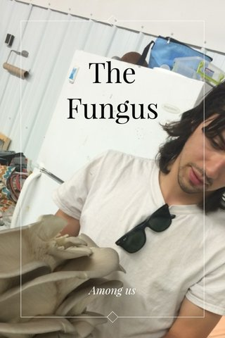 The Fungus Among us