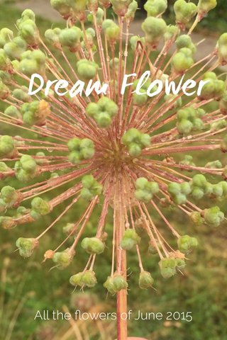Dream Flower All the flowers of June 2015