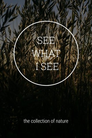 SEE WHAT I SEE the collection of nature