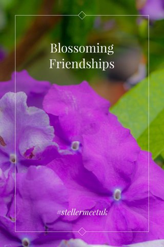 Blossoming Friendships #stellermeetuk