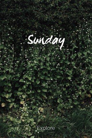 Sunday Explore