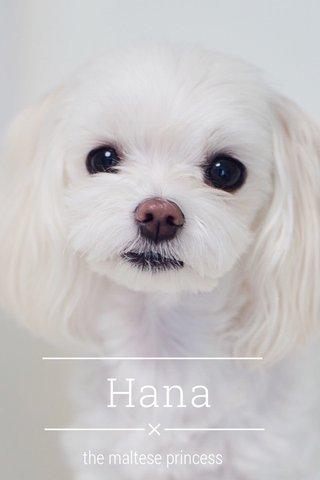 Hana the maltese princess