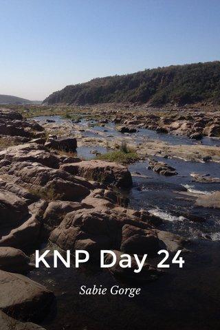 KNP Day 24 Sabie Gorge