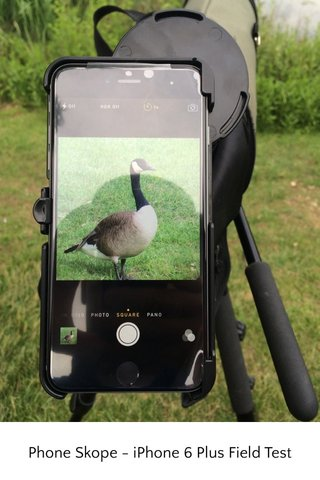 Phone Skope - iPhone 6 Plus Field Test