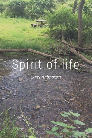 Spirit of life Green/brown