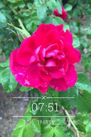 07:51 17.08.15