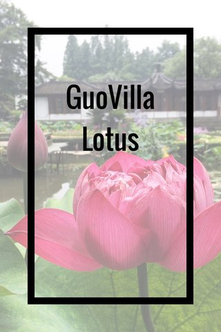 GuoVilla Lotus