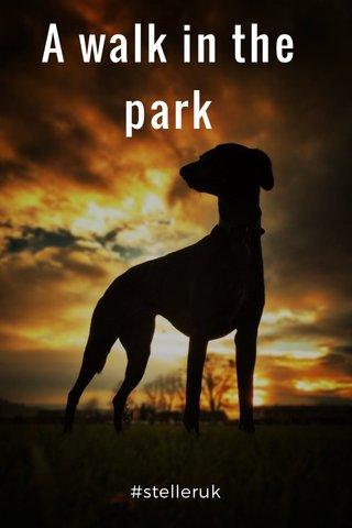 A walk in the park #stelleruk