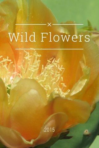 Wild Flowers 2015