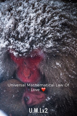 U.M.Lx2 Universal Mathematical Law Of Love ❤️