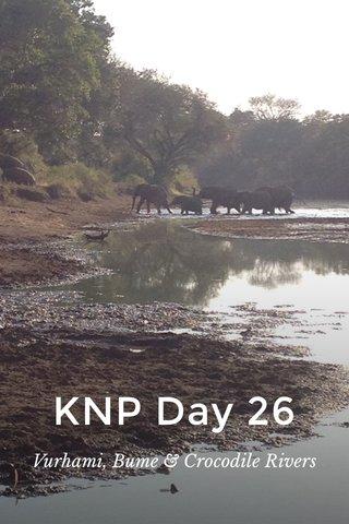 KNP Day 26 Vurhami, Bume & Crocodile Rivers