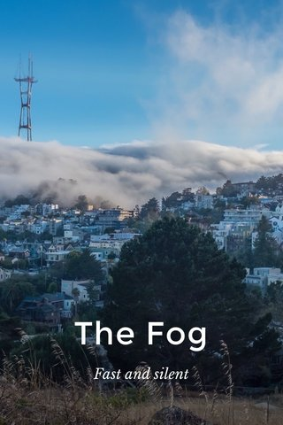 The Fog Fast and silent
