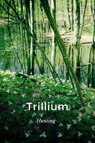 Trillium Hunting