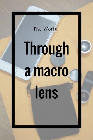 Througha macro lens The World
