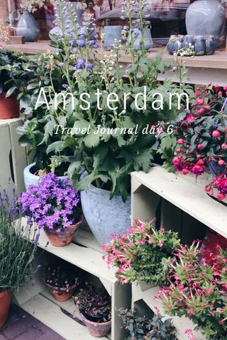 Amsterdam Travel Journal day 6