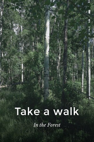 Take a walk In the Forest