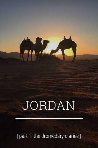 JORDAN | part 1: the dromedary diaries |