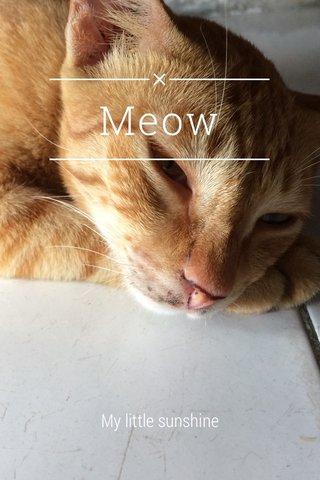 Meow My little sunshine