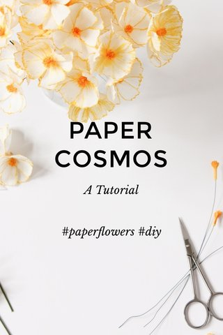 PAPER COSMOS A Tutorial #paperflowers #diy
