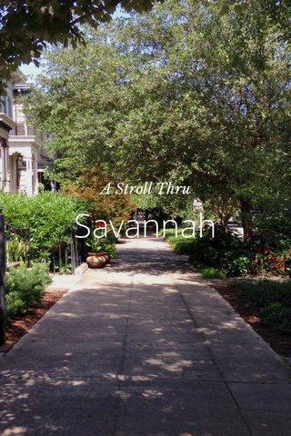 Savannah A Stroll Thru