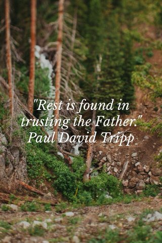 """""""Rest is found in trusting the Father."""" Paul David Tripp"""
