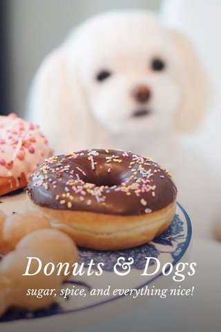Donuts & Dogs sugar, spice, and everything nice!