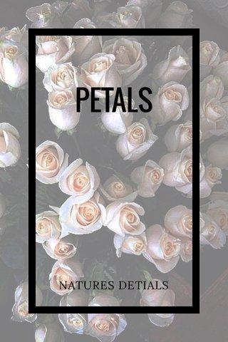 PETALS NATURES DETIALS