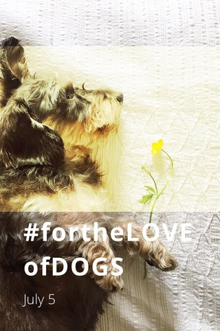 #fortheLOVEofDOGS July 5