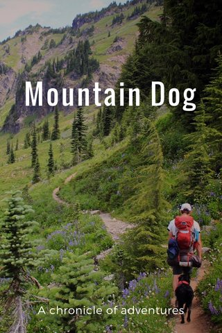 Mountain Dog A chronicle of adventures