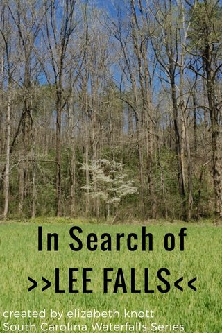 In Search of >>LEE FALLS<< created by elizabeth knott South Carolina Waterfalls Series