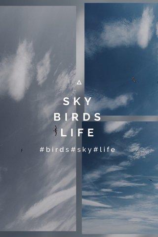 SKY BIRDS LIFE #birds#sky#life