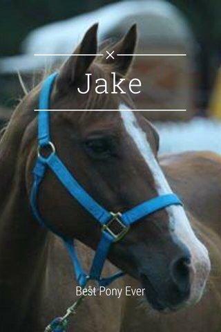 Jake Best Pony Ever