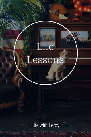 Life Lessons | Life with Leroy |